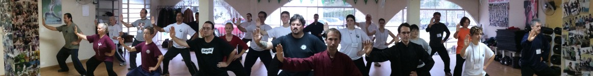 brazil tai chi learning